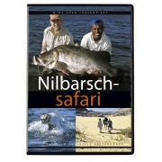 Nilbarsch - Safari